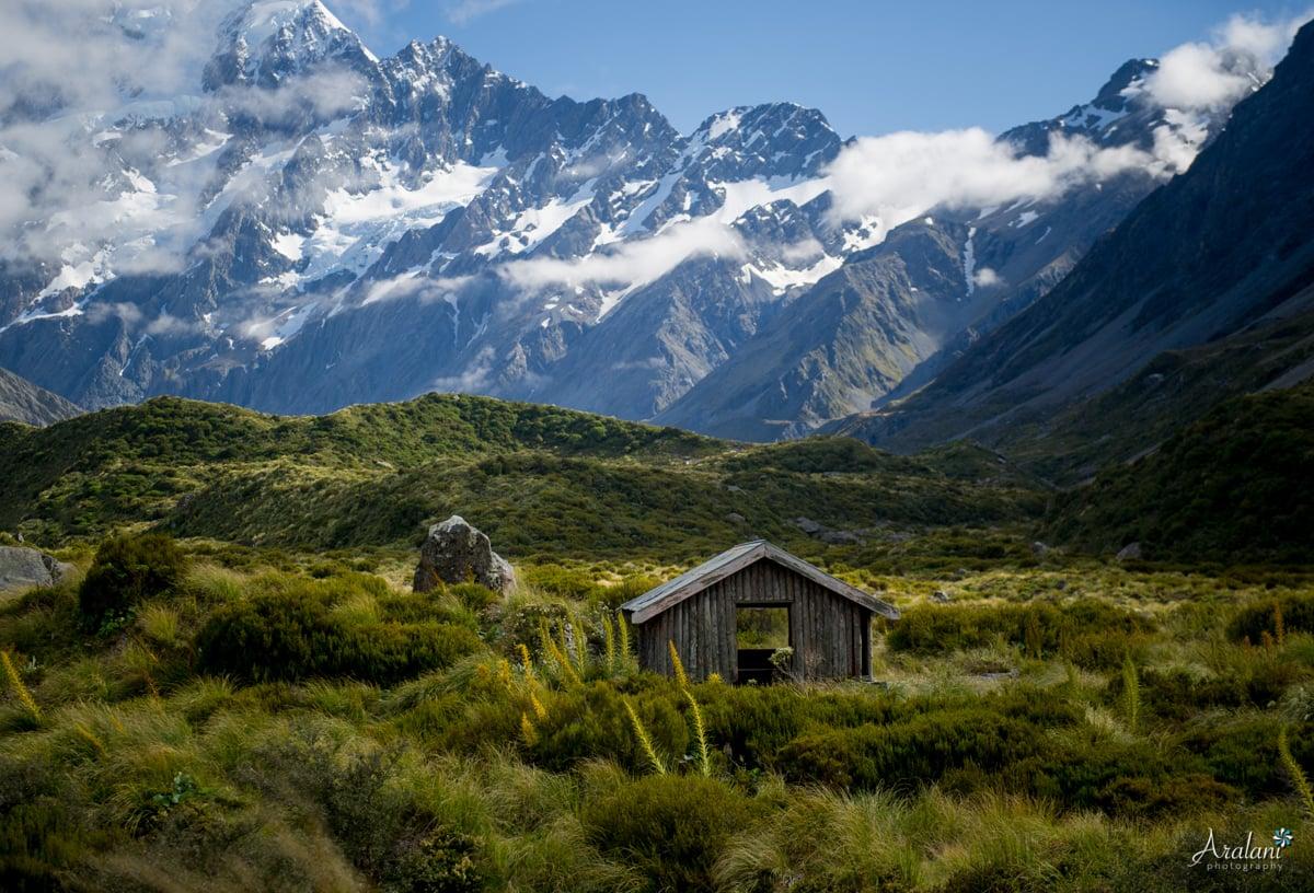 New_Zealand_Roadtrip_0023.jpg
