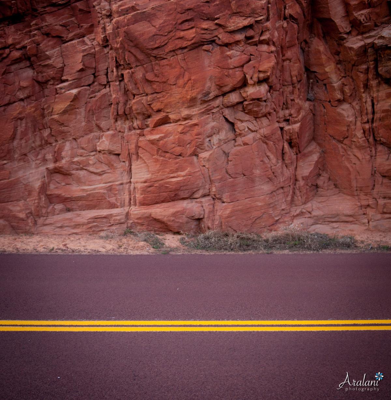 Zion_Canyoneering_Adventure034.jpg