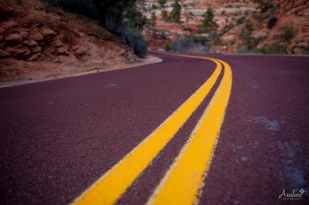 Zion_Canyoneering_Adventure035.jpg