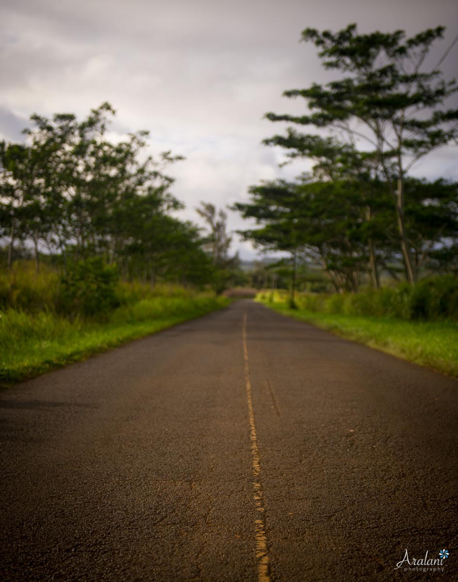 Kauai_Trip_Report0003.jpg