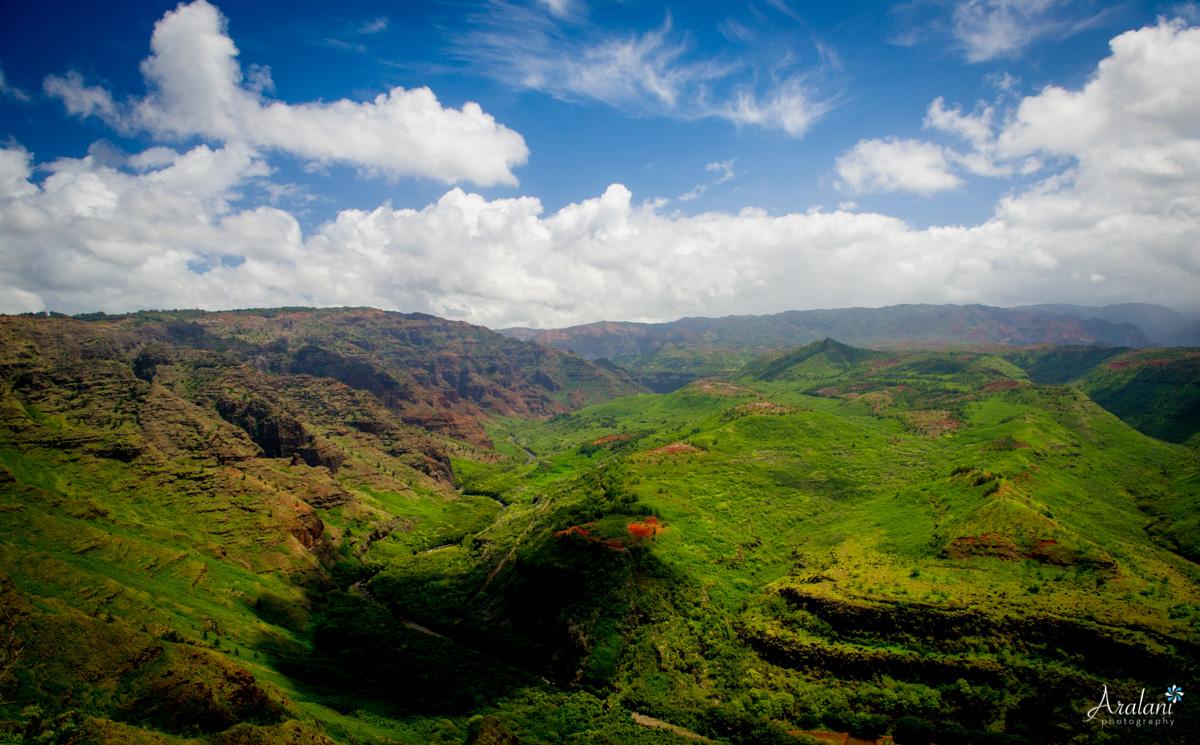 Kauai_Trip_Report0023.jpg