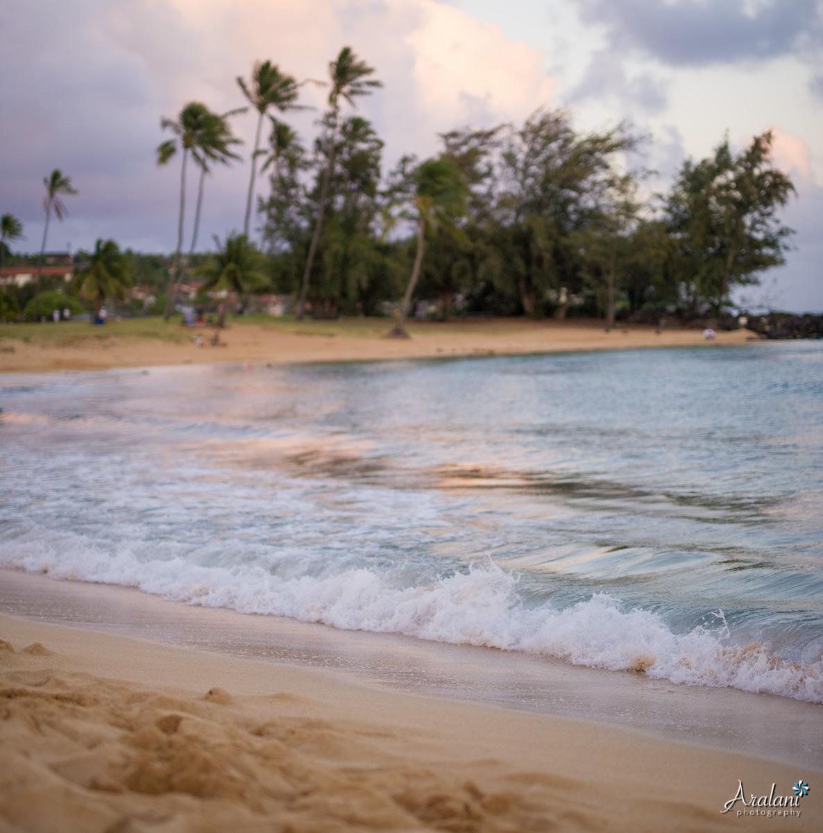 Kauai_Trip_Report0047.jpg