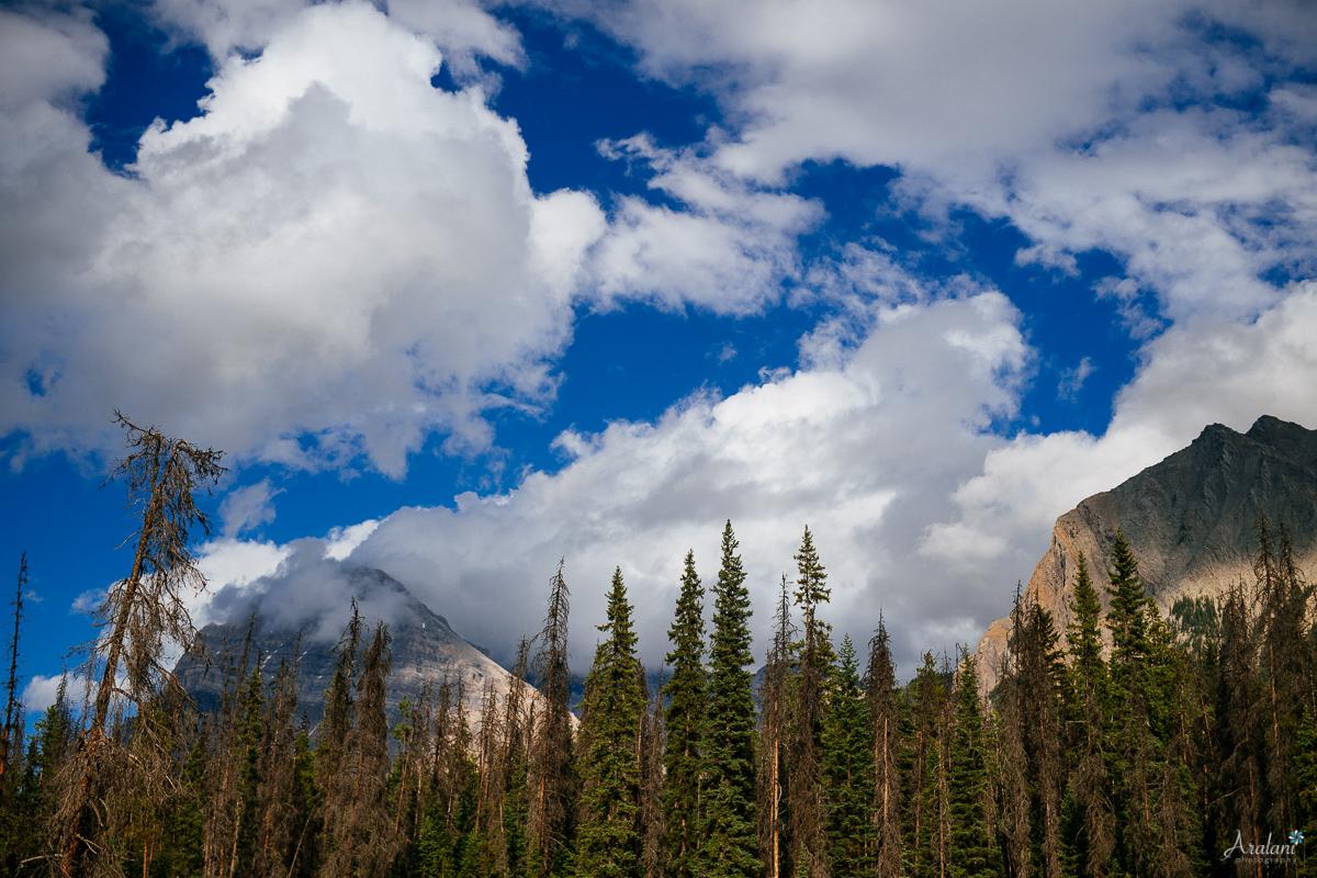 Banff_Roadtrip_005.jpg