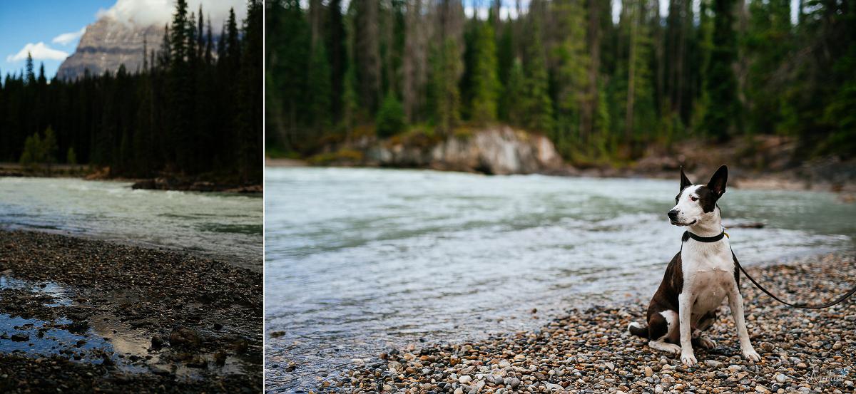 Banff_Roadtrip_008.jpg