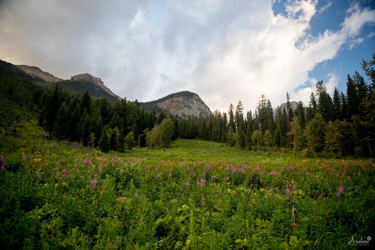 Banff_Roadtrip_015.jpg