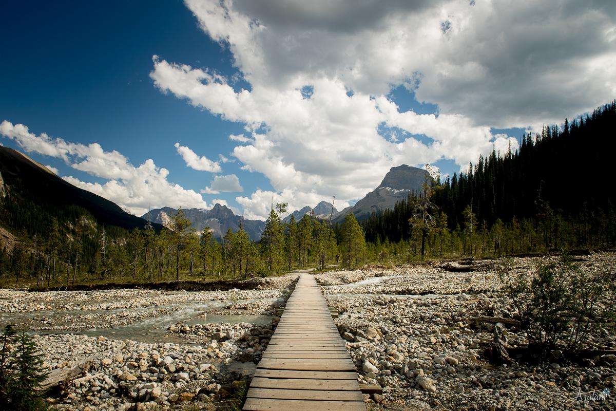 Banff_Roadtrip_045.jpg