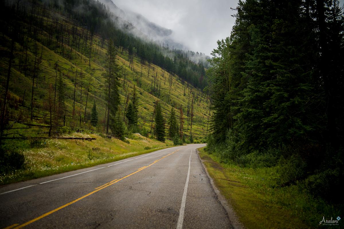 Banff_Roadtrip_060.jpg
