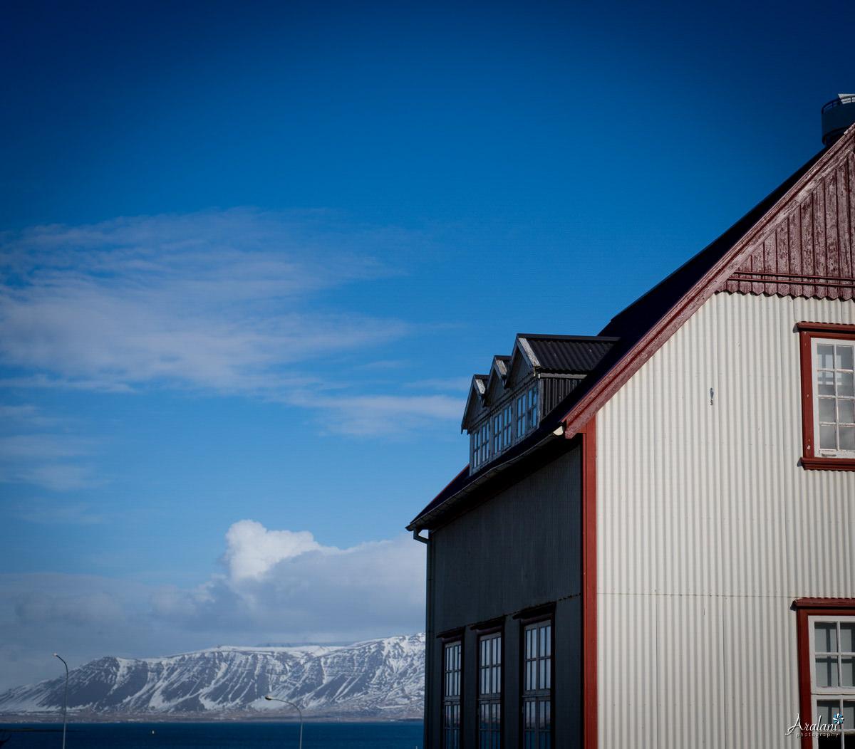 Iceland_Aralani0002.jpg