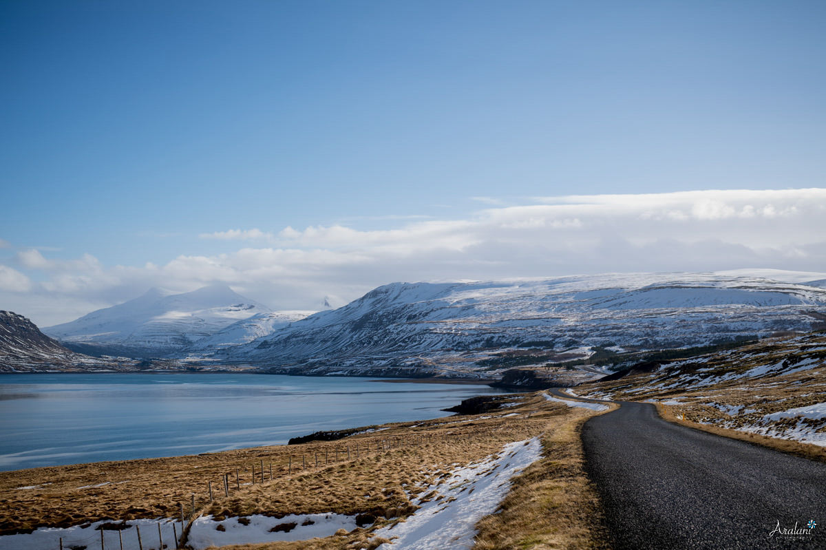 Iceland_Aralani0014.jpg