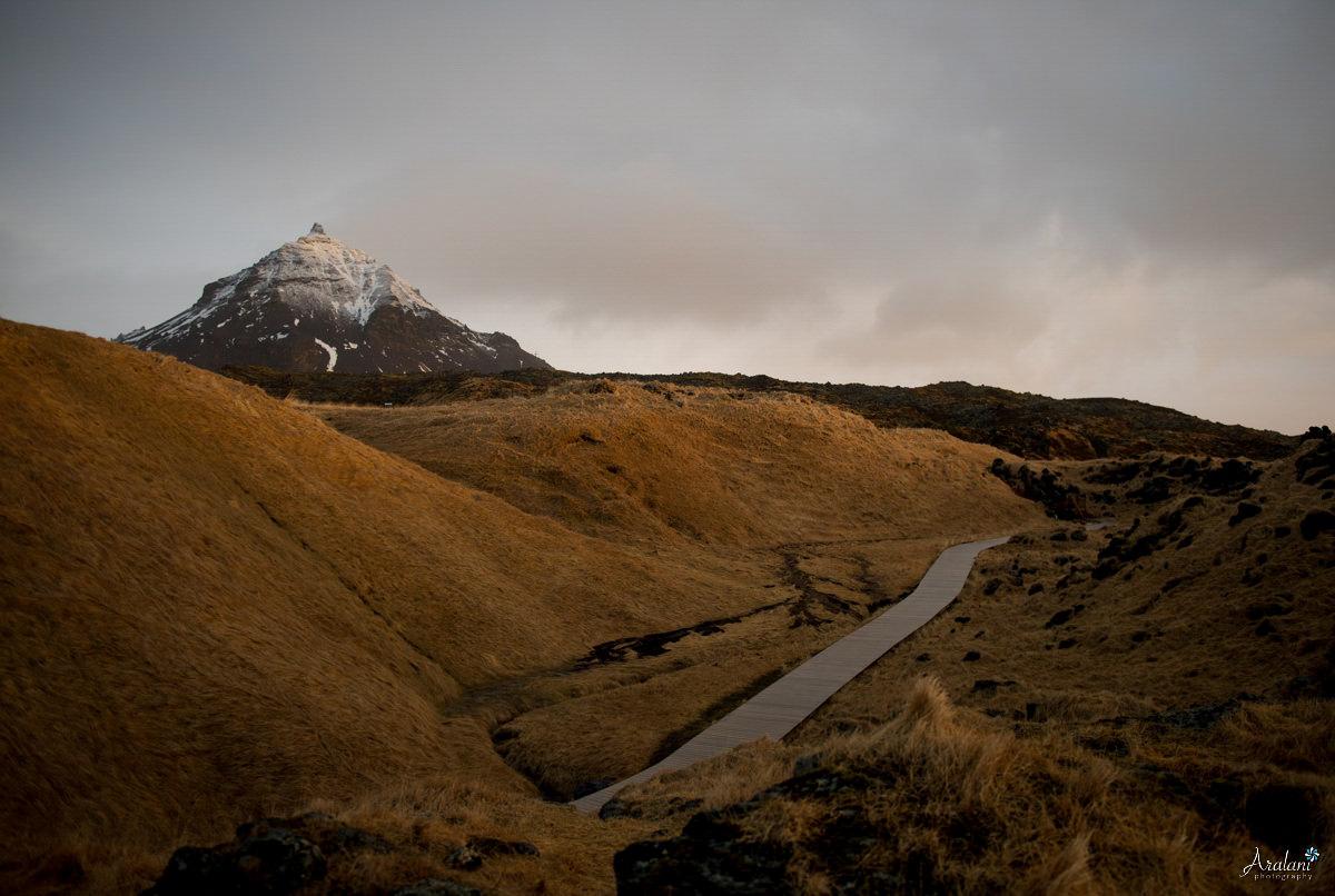 Iceland_Aralani0023.jpg