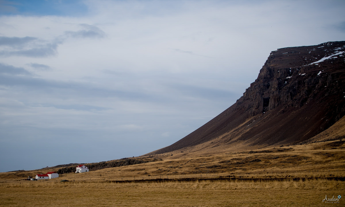 Iceland_Aralani0033.jpg