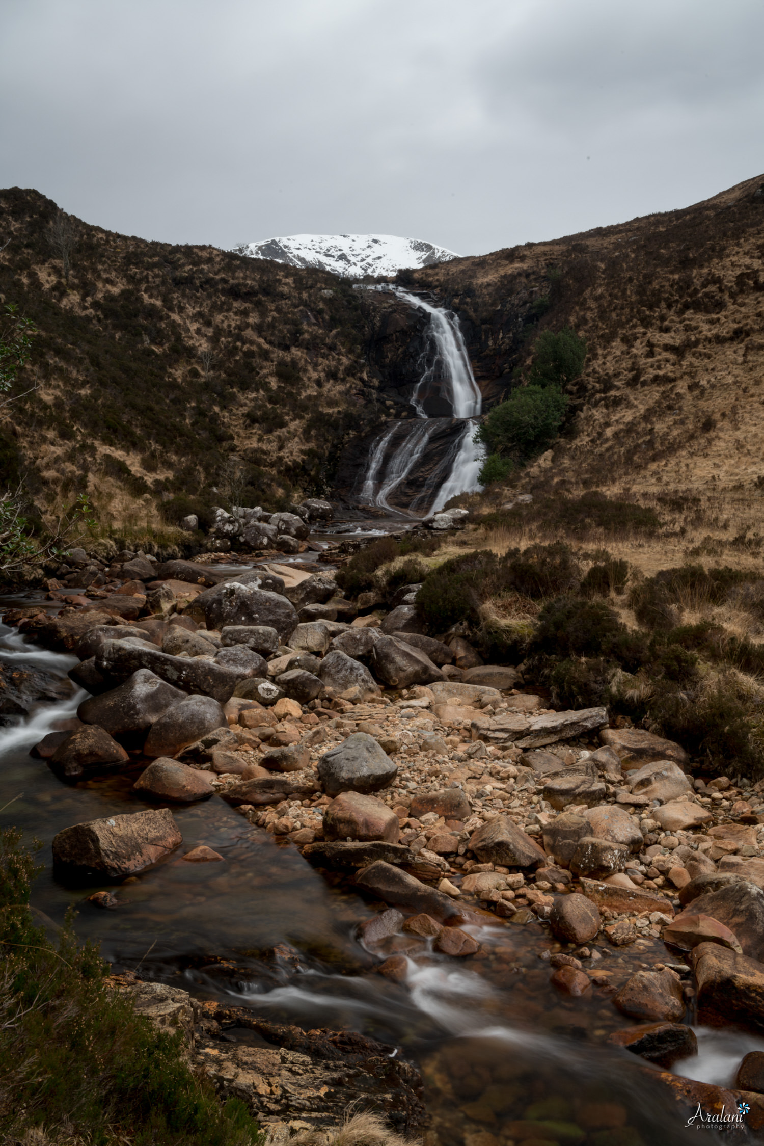 Aralani_Scotland_0025.jpg