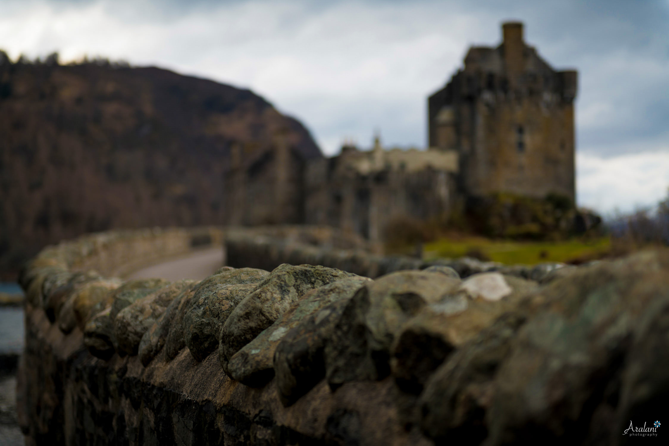 Aralani_Scotland_0027.jpg