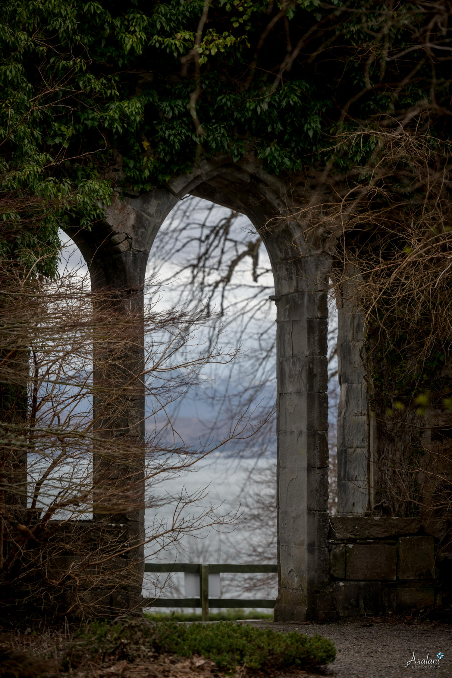 Aralani_Scotland_0028.jpg