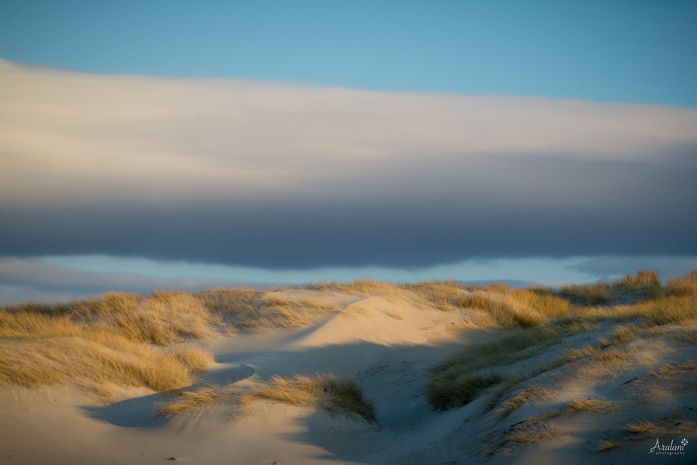 Aralani_Scotland_0042.jpg