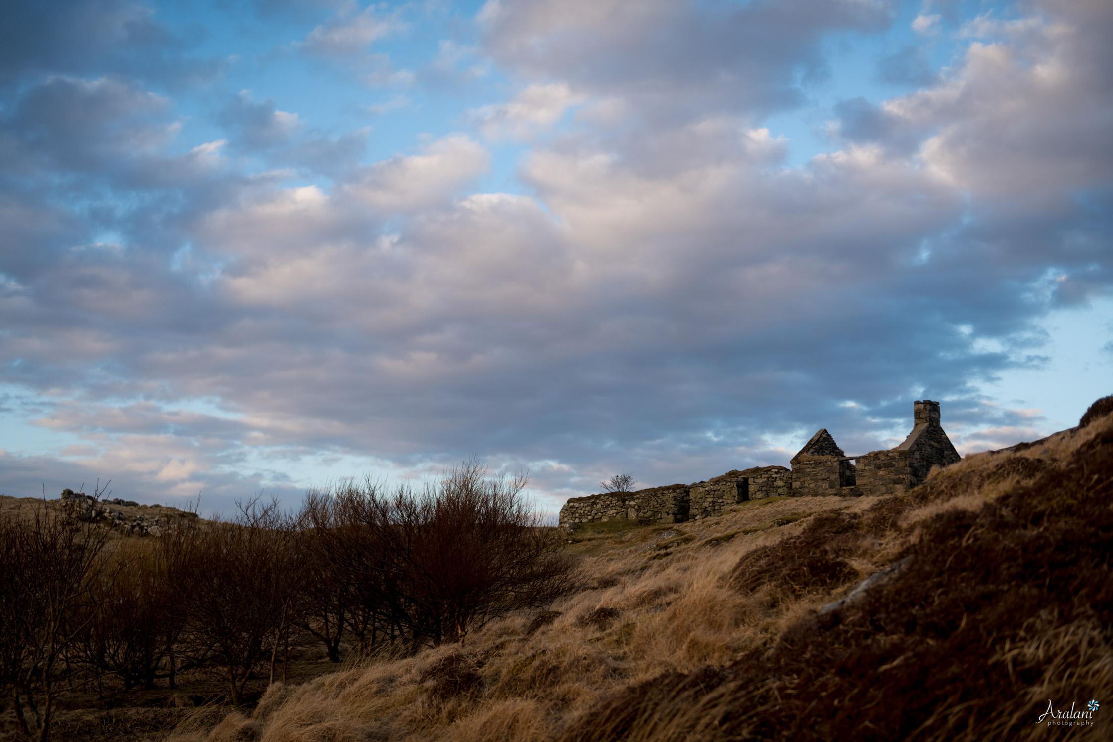 Aralani_Scotland_0049.jpg