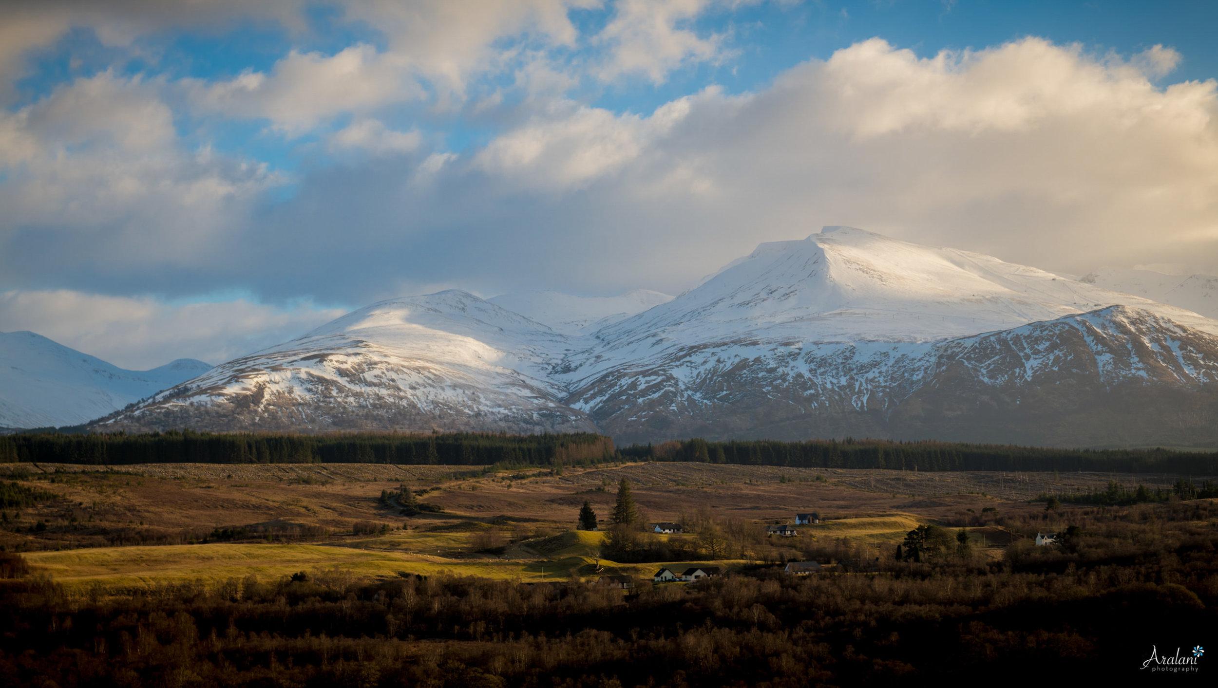 Aralani_Scotland_0055.jpg