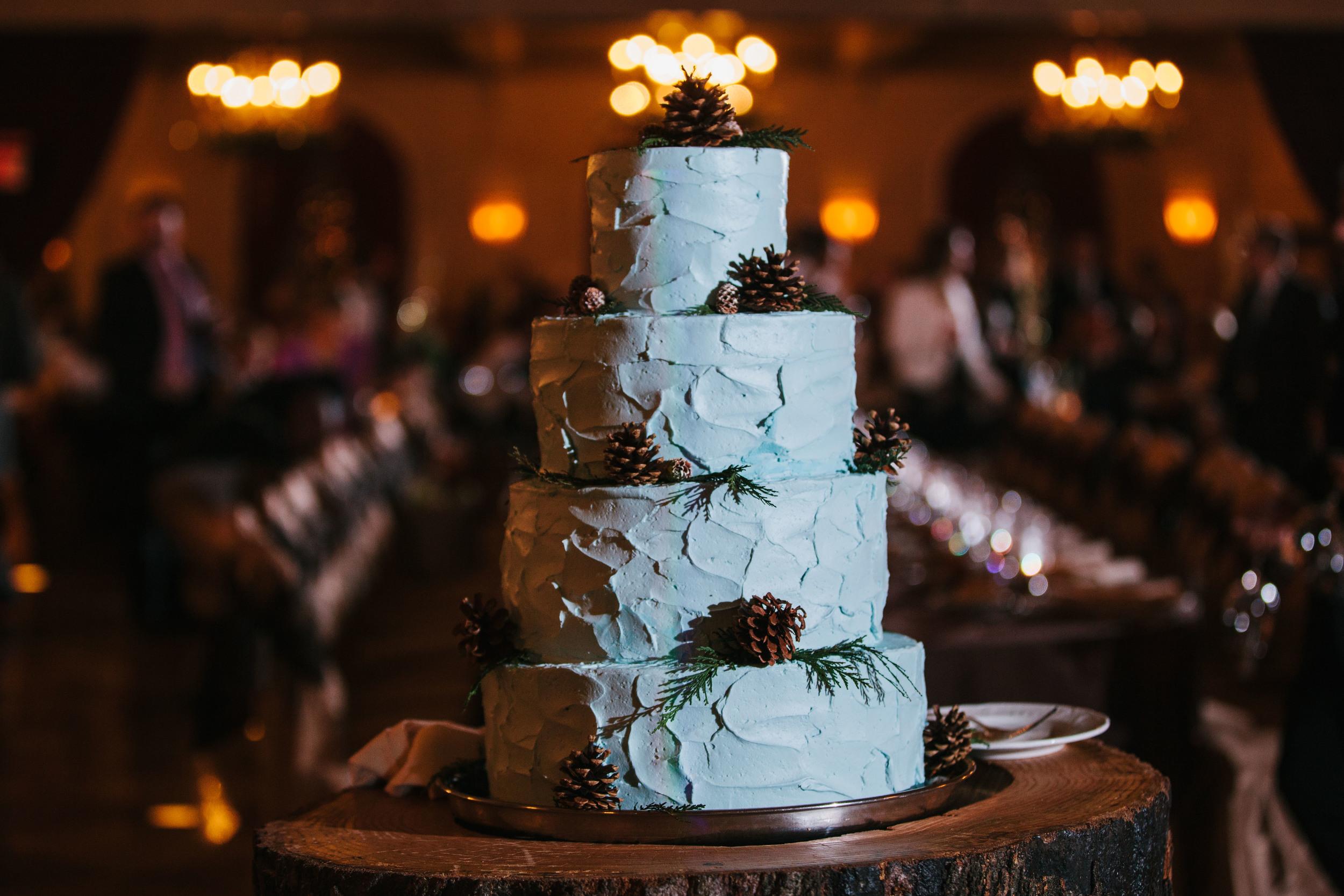 St Louis Wedding Photography-1073.jpg