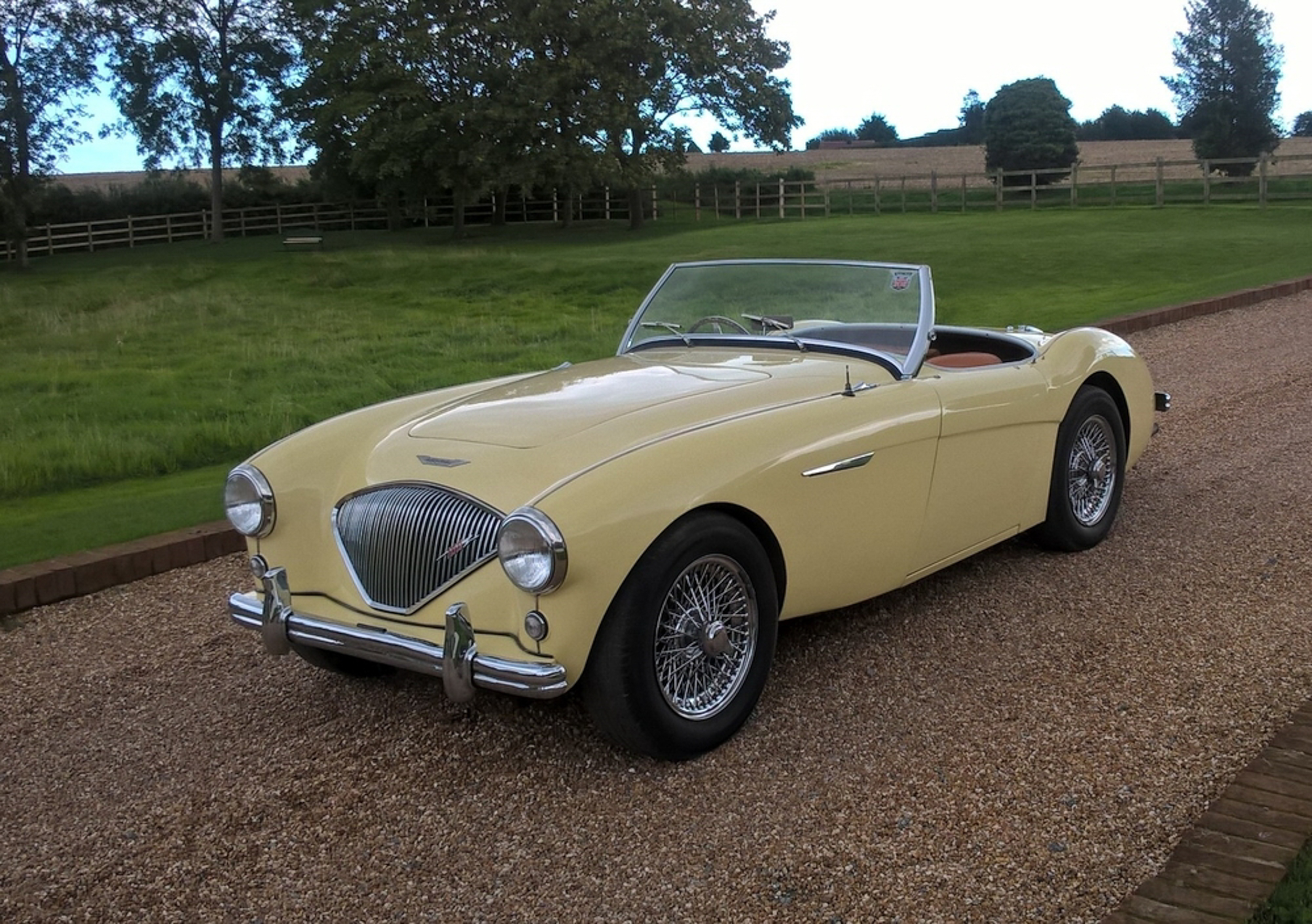 1955 Austin Healey 100/4 BN1