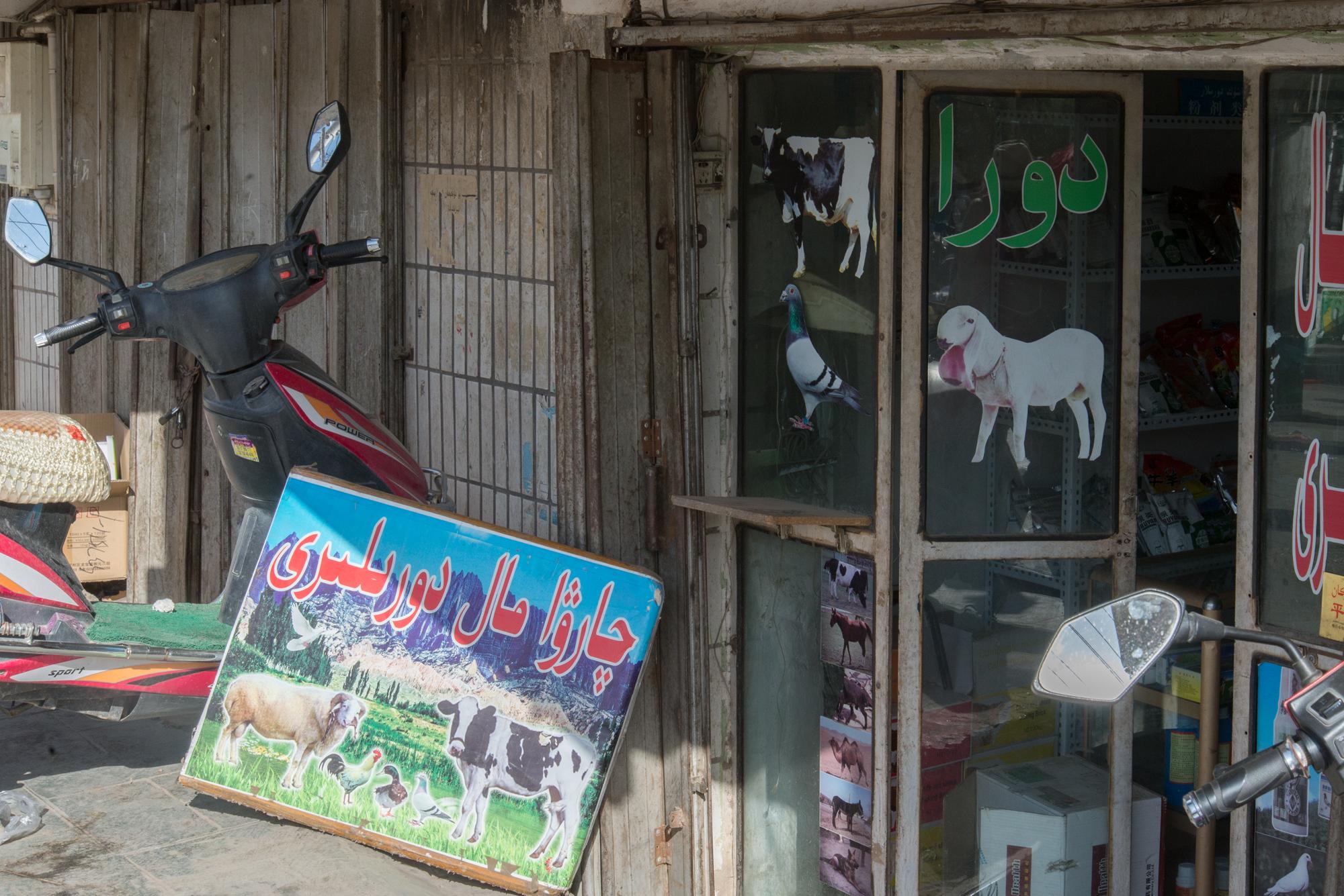 Feed Store, Kashgar Bazaar
