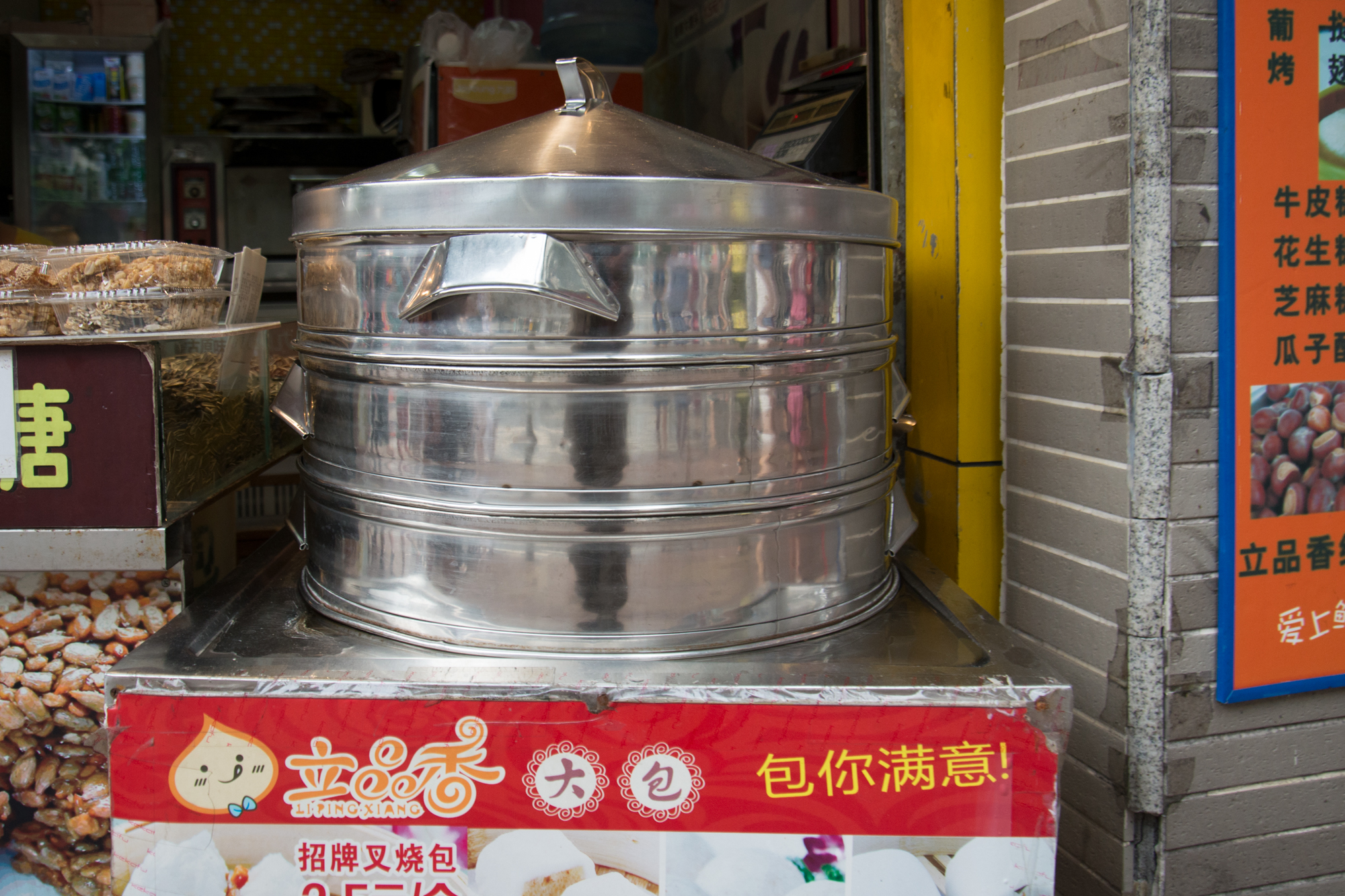 Dumpling Steamer
