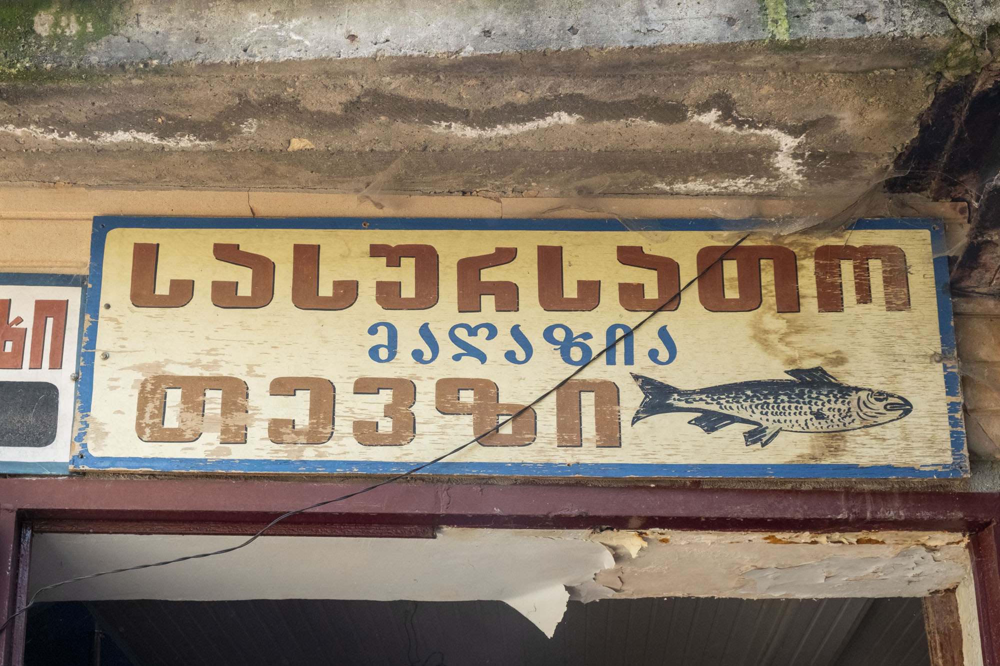 fish store sign.jpg