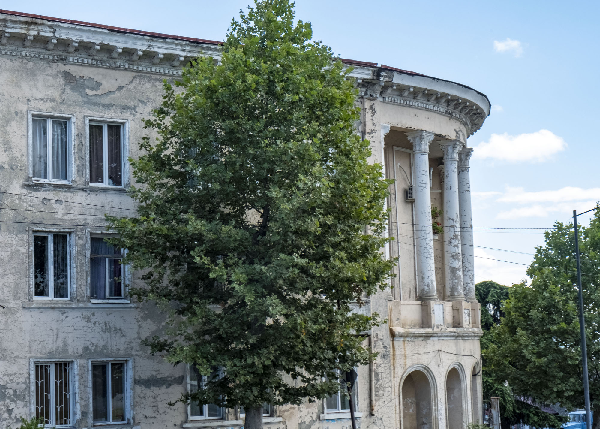 stalin era building with tree.jpg