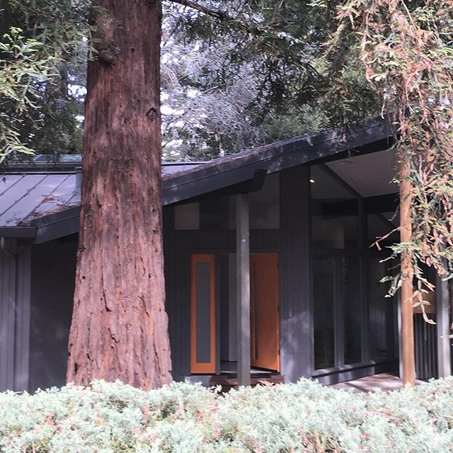 #buildingLab #midcentury entry to mcm house in atherton nearing completion