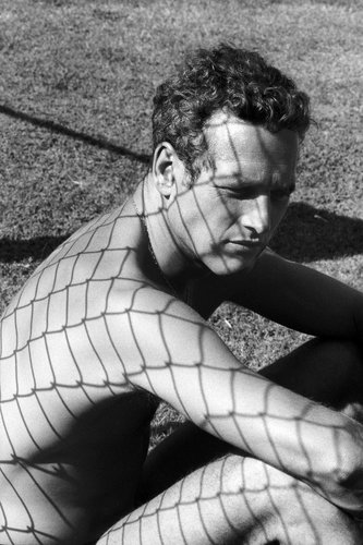 Trying to make it unnatural.     Paul Newman by Dennis Hopper, 1964.  (1)
