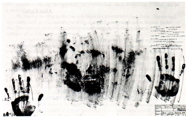 Jasper Johns - Skin with O'Hara Poem :  http://www.criticsatlarge.ca/2012/08/ghost-in-machine-jasper-johns-at.html