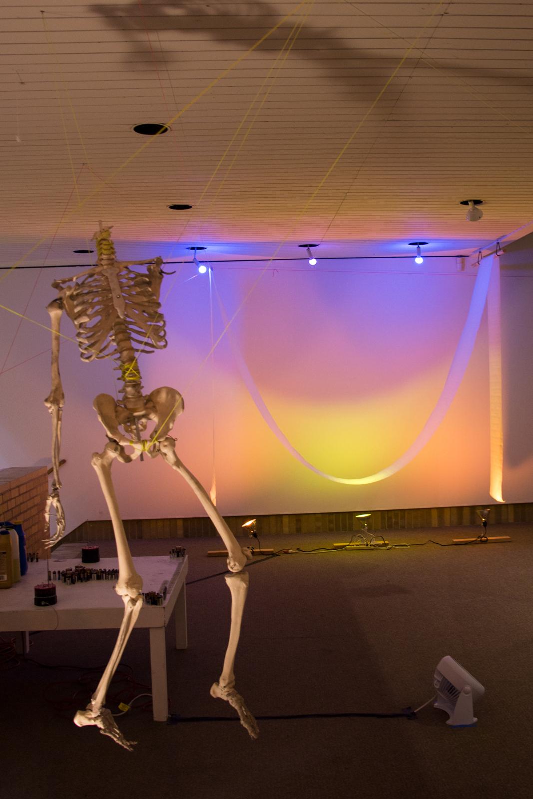 skeleton_hanging_web.jpg