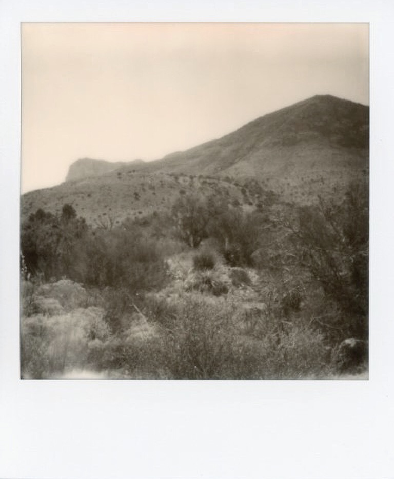 Guadalupe Mountains 6