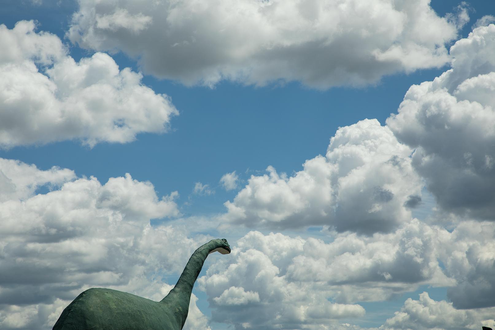 Wall-Dino_web.jpg