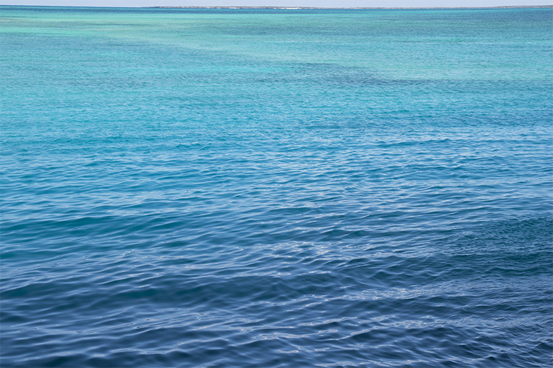 Blue Blue Blue web.jpg