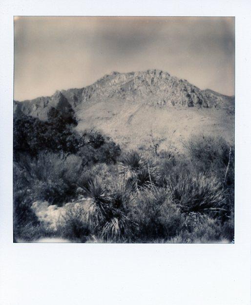 New Mexico011.jpg