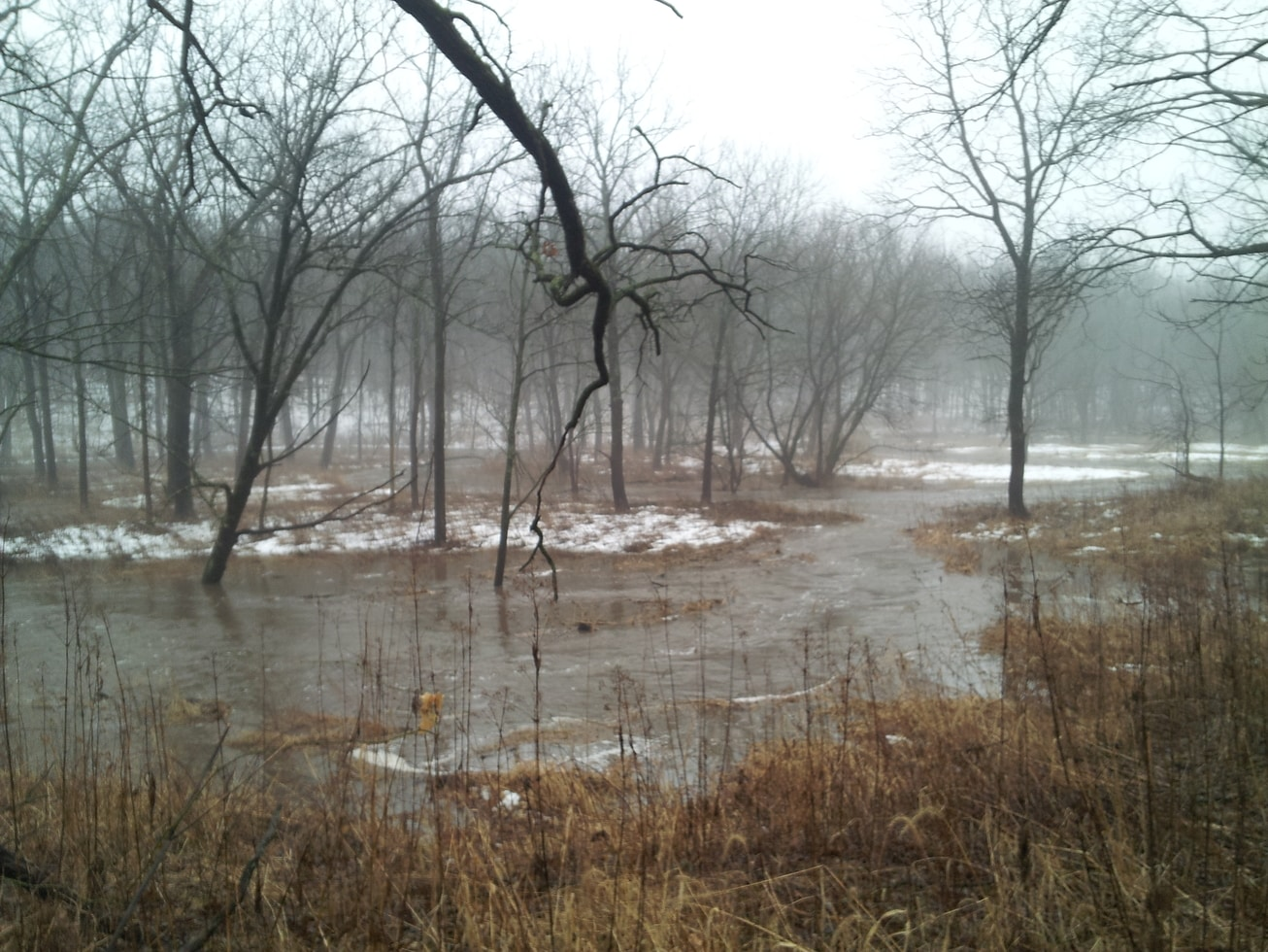 The area in the foreground is usually well above water, with Hall Creek confined to a channel behind. The floodplain deftly carried the excess water downstream toward the Rock River.