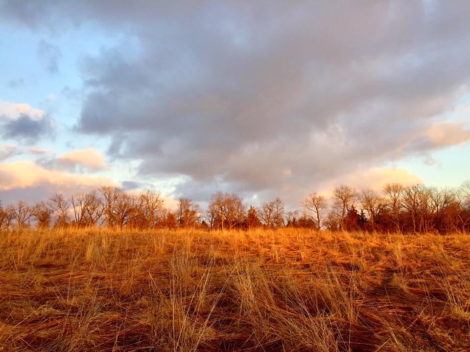 January Prairie