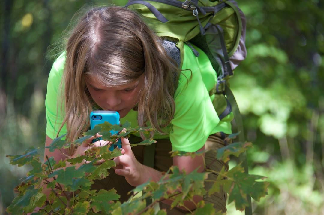 Become a Citizen Scientist with iNaturalist — Severson Dells