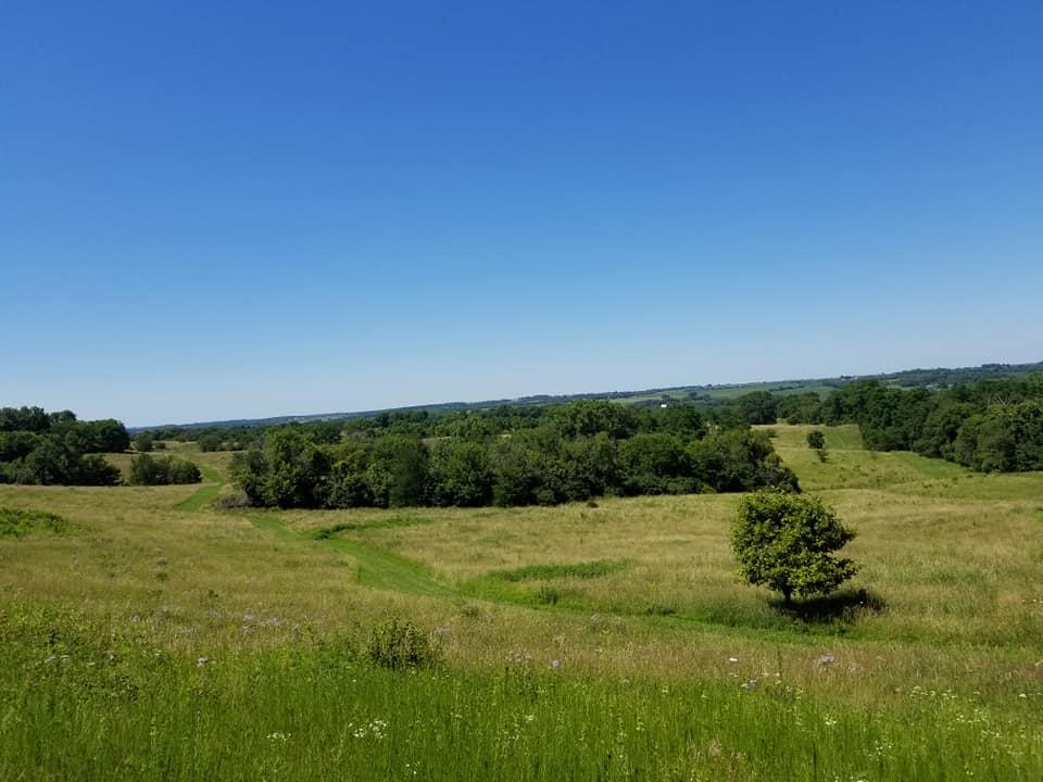 bald hill prairie.jpg