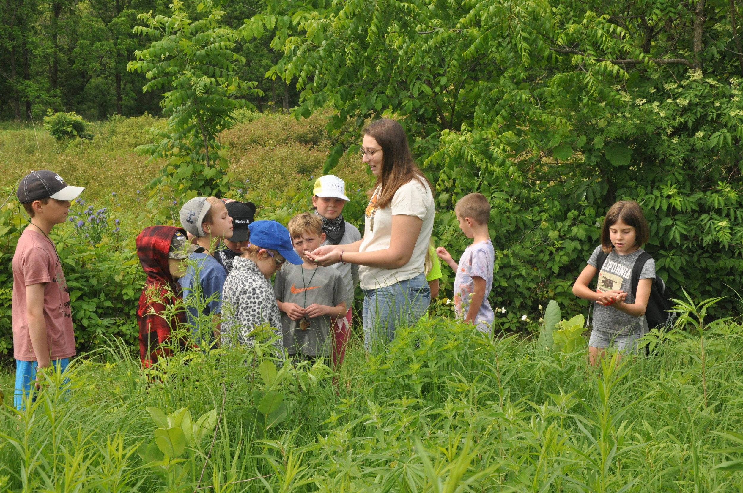 Blog — Severson Dells Nature Center