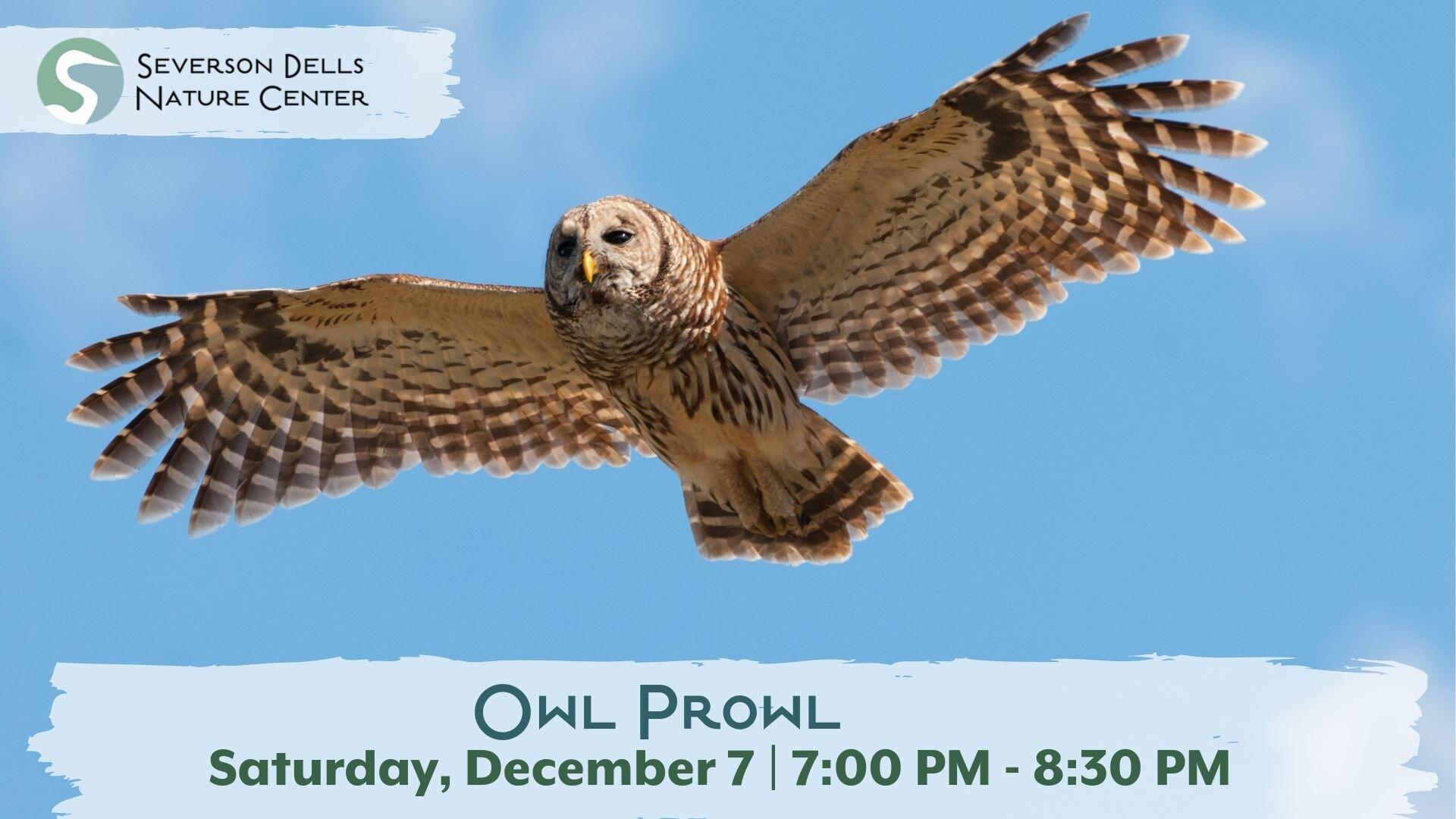 Owl Prowl.jpg
