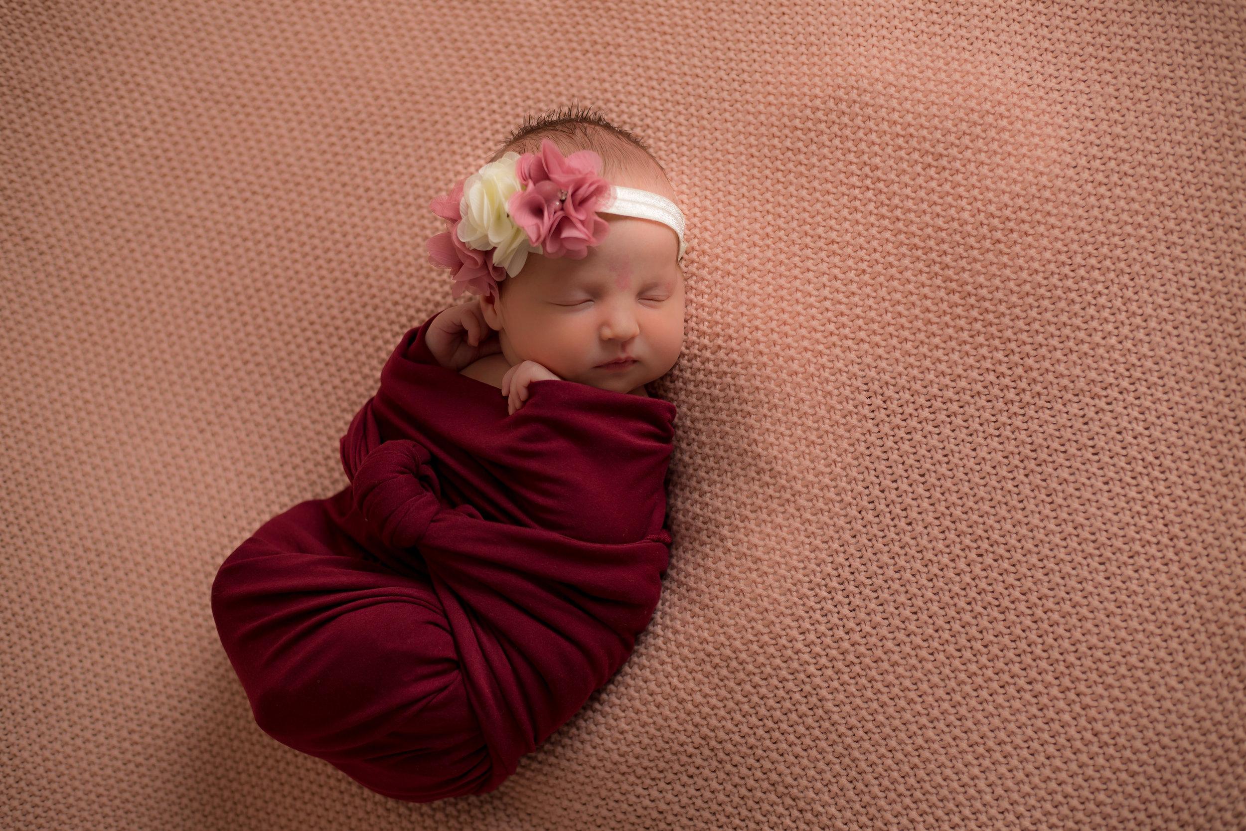 sioux city newborn photographer
