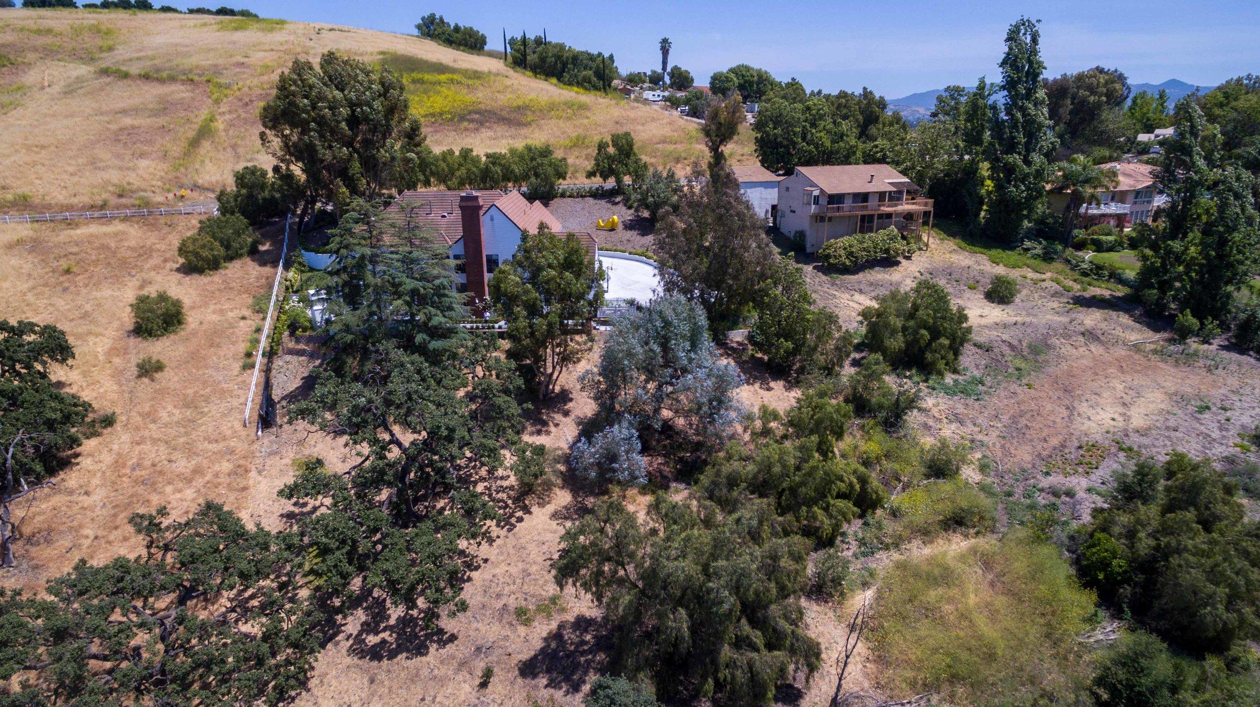 Loan Oak- drone-0394.jpg
