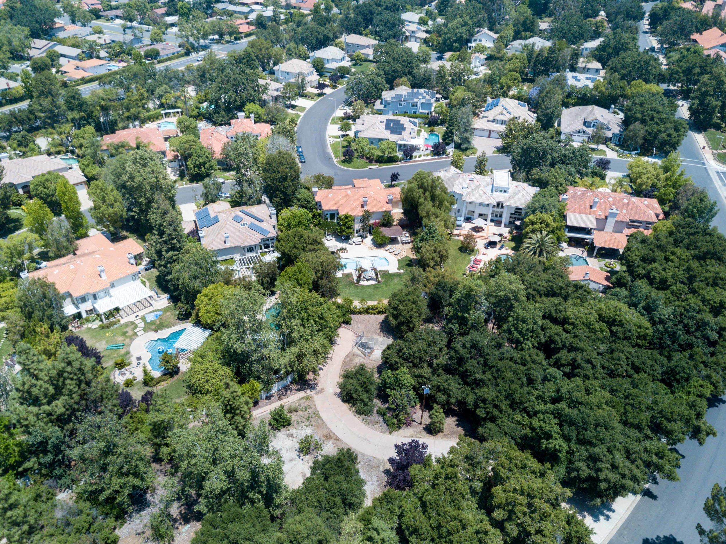 Saddletree-drone-0519.jpg