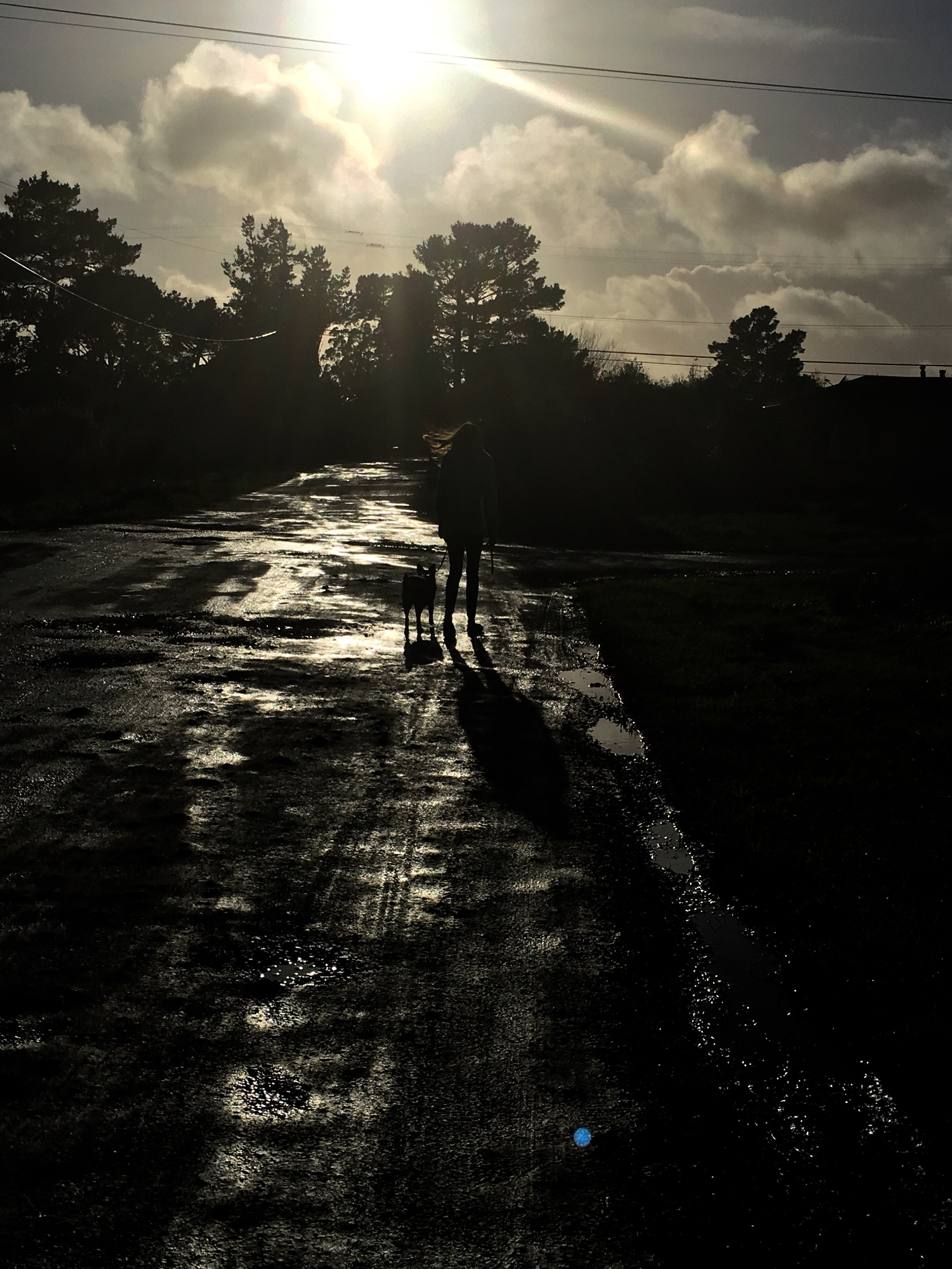 """In this shot, Clare walks her dog on a wet street. This image is silkscreened onto  Will You Still Take Good Care of Me , the new 7"""" from Peggy Honeywell. Image provided by the artist."""