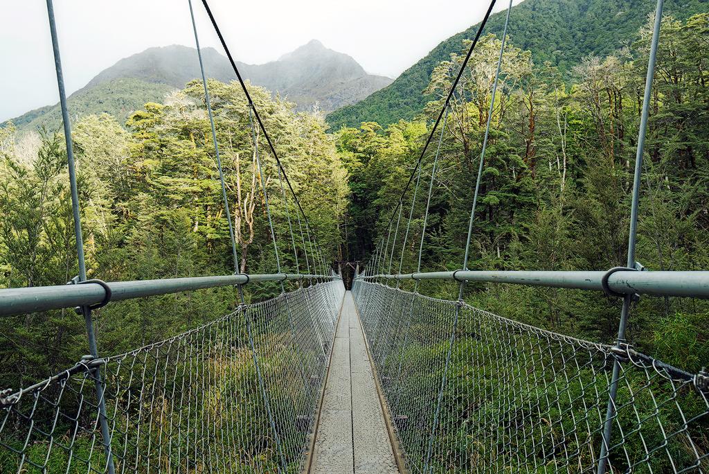 Routeburn Bridge.jpg
