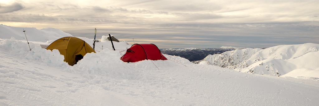 WF Tents.jpg