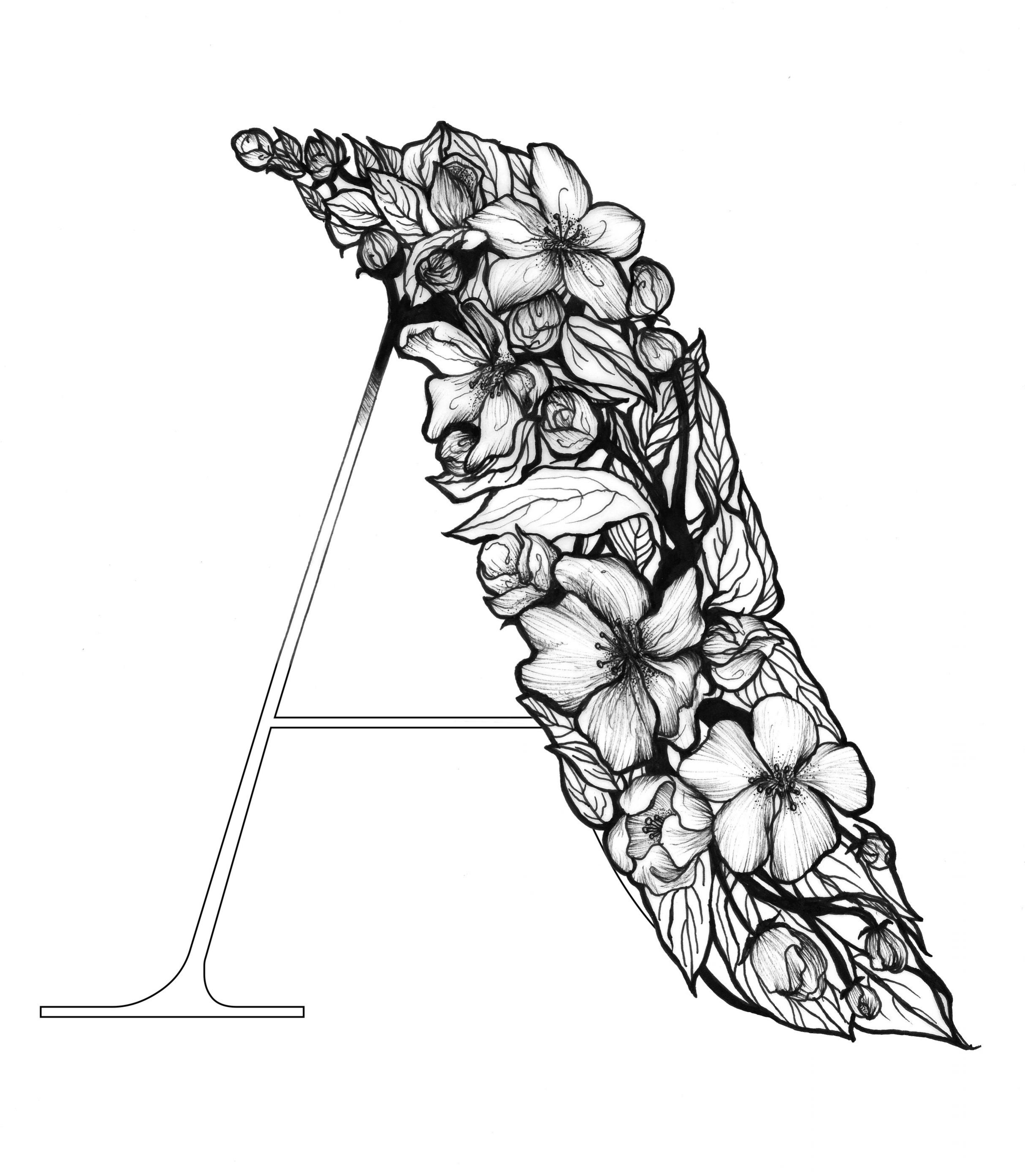 a_n.jpg