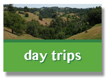 day trips on the russian river
