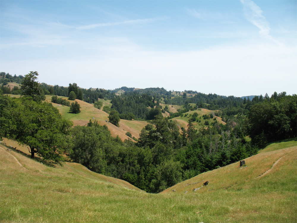 king ridge road, cazadero